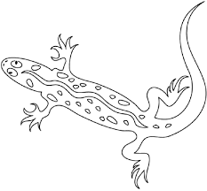 desert lizard coloring page lizard coloring pages desert lizard coloring pages on california