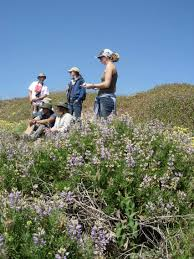 49 best california native plants april 2014 enewsletter california native plant society