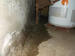 water in your basement everdry waterproofing rochester new york