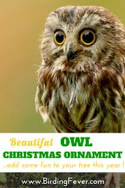 146 best bird christmas ornaments u0026 decorations images on