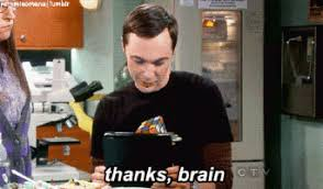 Big Bang Theory Birthday Meme - sheldon gifs get the best gif on giphy