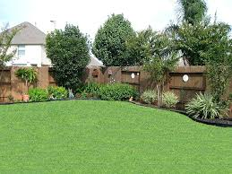 Backyard Privacy Fence Ideas Landscape Privacy Ideas Evergreens Used As Privacy Buffer