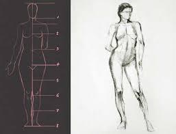 somniare lilium how to draw female body body proportions