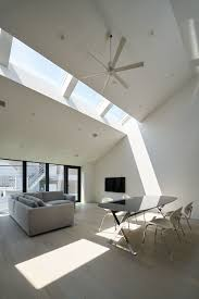 photo 8 of 10 in 10 light filled homes with interesting skylights