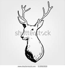 deer head sketch draw stock vector 513692818 shutterstock
