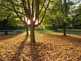 question of the day exactly when does autumn start in the uk