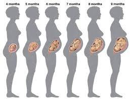 Beli Obat Aborsi 6 Bulan Obat Telat Bulan 082225850391 Agen Obat Aborsi 2808977a Agen Obat