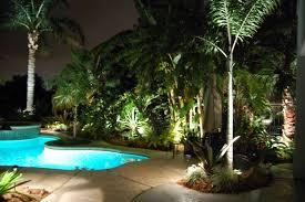impressive palm tree landscape lighting and pool exterior palm tree landscape lighting ideas