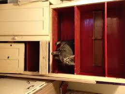 refinishing a butcher block countertop modern kitchen image of