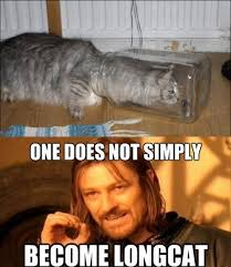 One Does Not Meme - image funny pictures one does not simply become longcat jpg teh