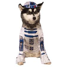 matching dog and owner halloween costumes top 20 best cute dog costumes for halloween