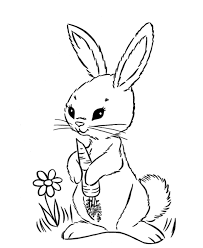 cute easter bunny eat carrot coloring page animal coloring pages