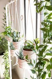 best 25 indoor hanging planters ideas on pinterest indoor