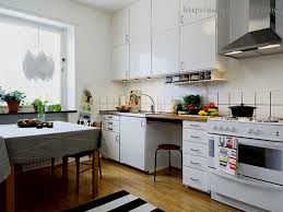 Tiny Apartment Kitchen Ideas Best Small Apartment Kitchen Gallery Home Design Ideas