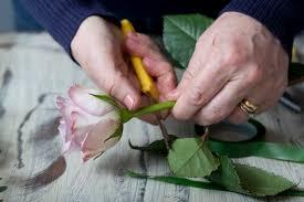 How To Make A Wrist Corsage Diy Flower Wrist Corsage The Bijou Bride
