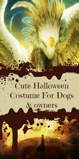 Dog Halloween Costume Kids Cute Halloween Costumes Dogs Owners Loves