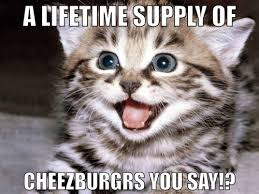 Meme Cheezburger - cheezburger cat meme by asianplatypus6 on deviantart