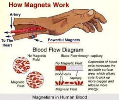 healthy magnetic bracelet images 13 best energetix images wellness magnets and therapy jpg
