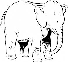 astounding elephant coloring pages with elephant coloring page