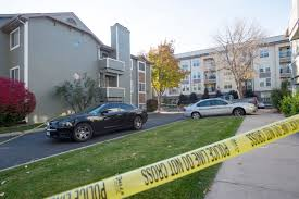 three dead including csu student one injured in shooting near the