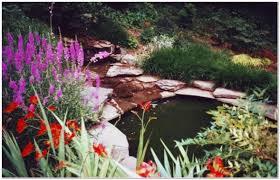 Backyard Living Ideas by 5 Top Backyard Landscaping Ideas For Main Line Philadelphia Homes