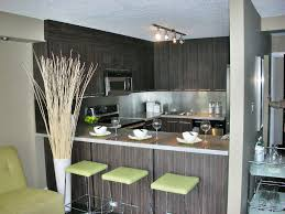 lower mount royal 1 bed modern condo a must see drummer realty