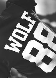 wallpaper exo wolf 88 biases everywhere via tumblr image 902473 by awesomeguy on