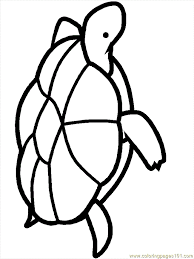 turtle coloring pages 10 coloring free turtle coloring