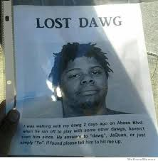Lost Dog Meme - lost dawg weknowmemes