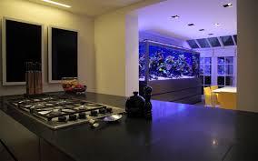 custom made fish tank london luxury townhouse aquarium architecture