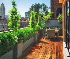 Ideas For Terrace Garden Apartment Terrace Garden Plants Reliable Also Ideas Pictures