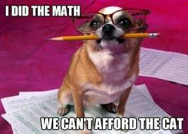 Puppy Memes - we can t afford the cat funny memes animals dog puppy meme lol cute