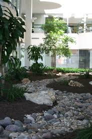 home plants decor fresh interior landscape plants decorating ideas lovely on