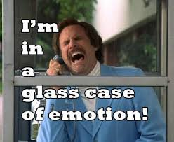Glass Case Of Emotion Meme - ron burgundy glass case of emotion the regular guy nyc