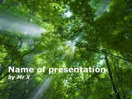 light beam passing through the trees powerpoint template