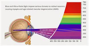 blue light and macular degeneration what is blue light and why do i need protection from it ocushield