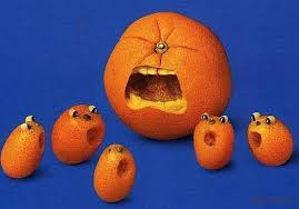 oranges yeahorangesyeah