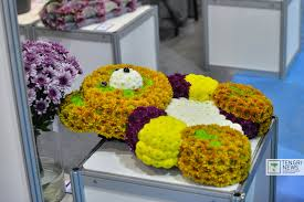 Flower Companies Astana Residents Try On Flower Shoes At Astanafloraexpo 2015