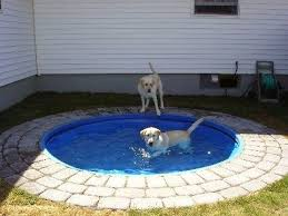 dog pond place a plastic kiddie pool in the ground it u0027d be easy