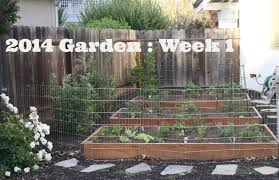 how to keep dogs out of garden pyihome com