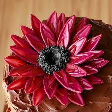 chocolate sunflower cake