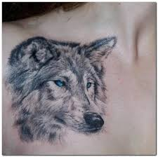 25 artistic wolf designs collections