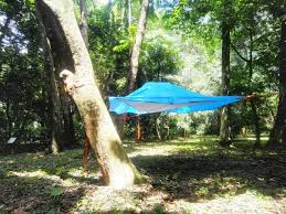 free shipping luxury tree tent hanging tent hammock tent in