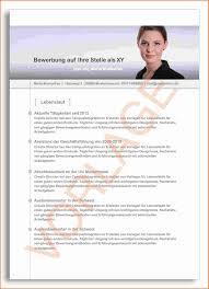 Lebenslauf Vorlage Gratis 12 Professioneller Lebenslauf Vorlage Kostenlos Transition Plan