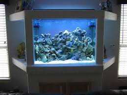 best 25 fish tank decoration ideas ideas on aquarium