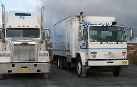 renault skala cargo