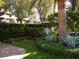 Home Designer Pro Landscape by Professional Landscape Designer Coral Gables Blaum Landscaping