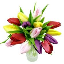 Tulip Bouquets Send Tulips Tulip Bouquets Delivered Nationwide