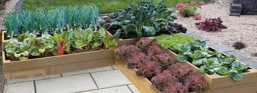 Vegetable Beds Vegetable Gardeners Site U0026 Premium Raised Bed Suppliers Quickcrop