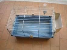 gabbie per conigli nani usate gabbia conigli accessori vari per animali kijiji annunci di ebay